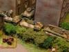 Katzchen advancing (15mm)
